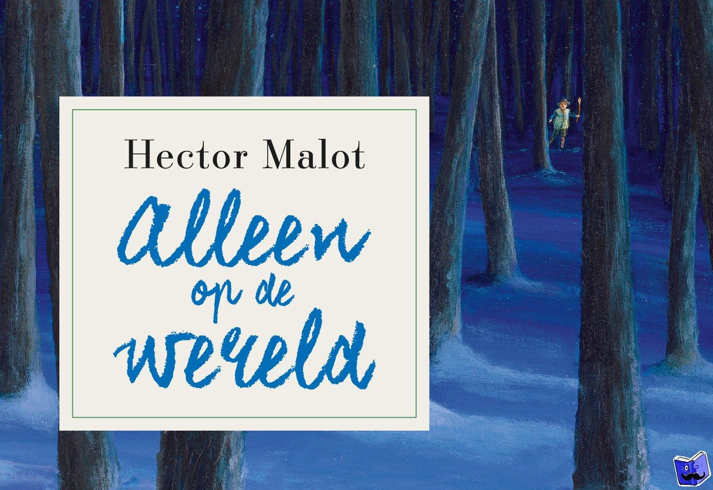 Malot, Hector - Alleen op de wereld