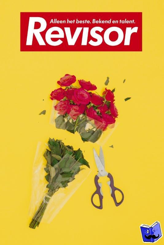Revisor - 19