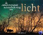 Linschooten, Jolanda - Licht