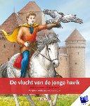Petermeijer, Hans - Terugblikken prentenboeken De vlucht van de jonge havik