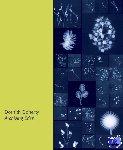 Doherty, Dornith, Avedon, Elizabeth - Archiving Eden