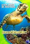 Schuetz, Kari - Zeeschildpadden, Leven onder de Zeespiegel