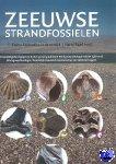 - Zeeuwse strandfossielen - POD editie